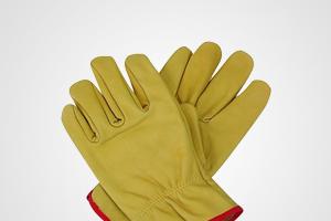 Safety Gloves (15)