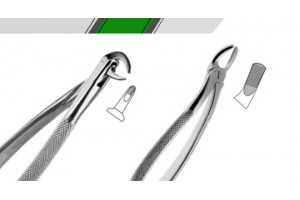 Xtrac™ English Pattern Tooth Extraction Forceps (46)